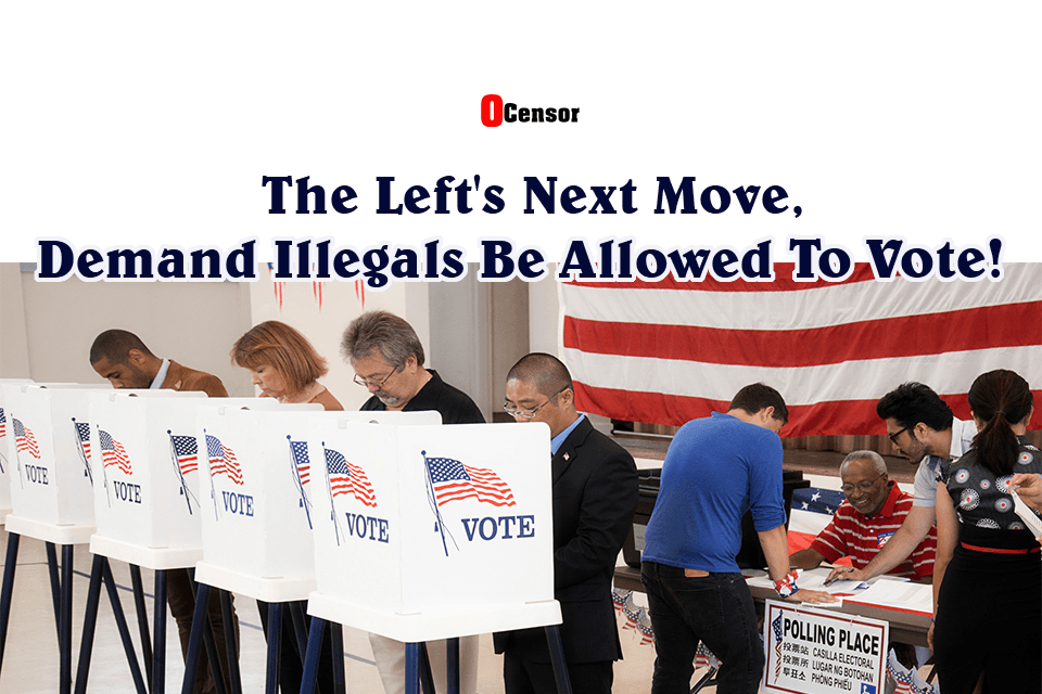 The Left's Next Move, Demand Illegals Be Allowed To Vote