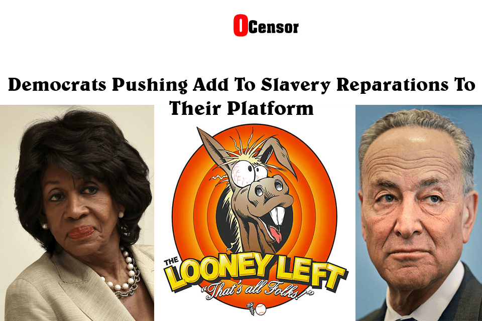 Democrats Pushing Add Slavery Reparations To Their Platform