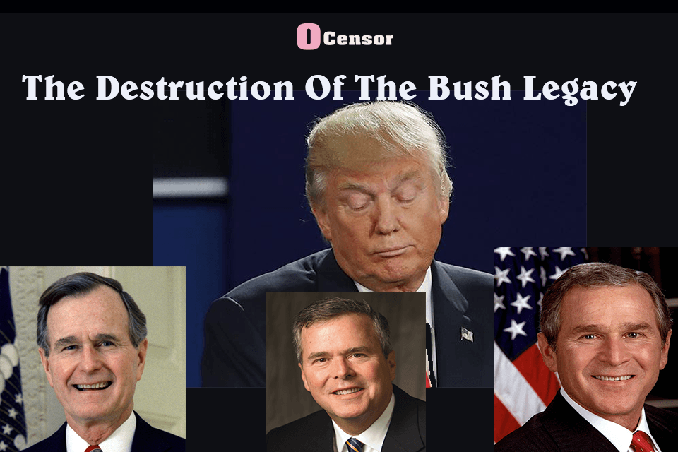 The Destruction Of The Bush Legacy