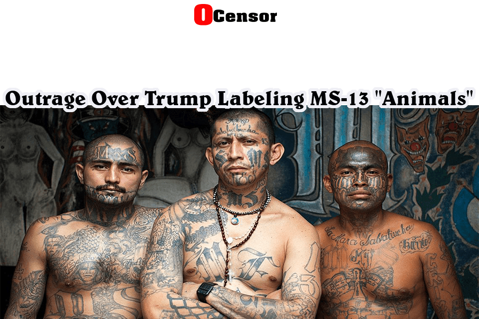 """Outrage Over Trump Labeling MS-13 """"Animals"""""""