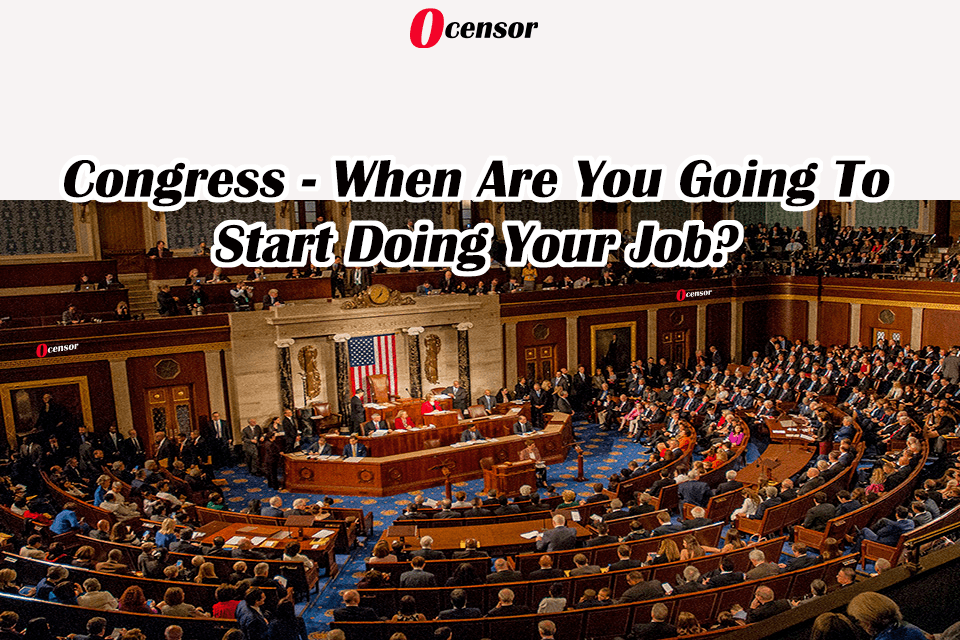 Congress – When Are You Going To Start Doing Your Job?
