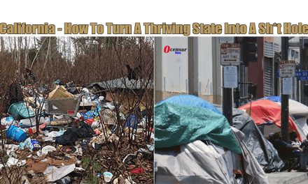 California – How To Turn A Thriving State Into A Sh*t Hole