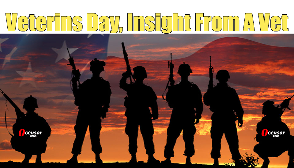 Veterans Day, Insight From A Vet