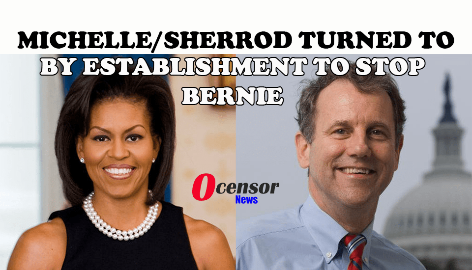 Michelle/Sherrod turned to By Establishment To Stop Bernie