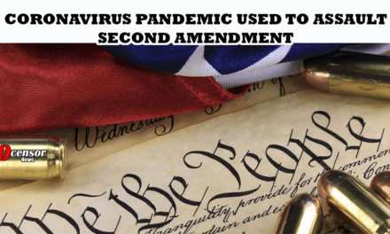 Coronavirus Pandemic Used To Assault Second Amendment